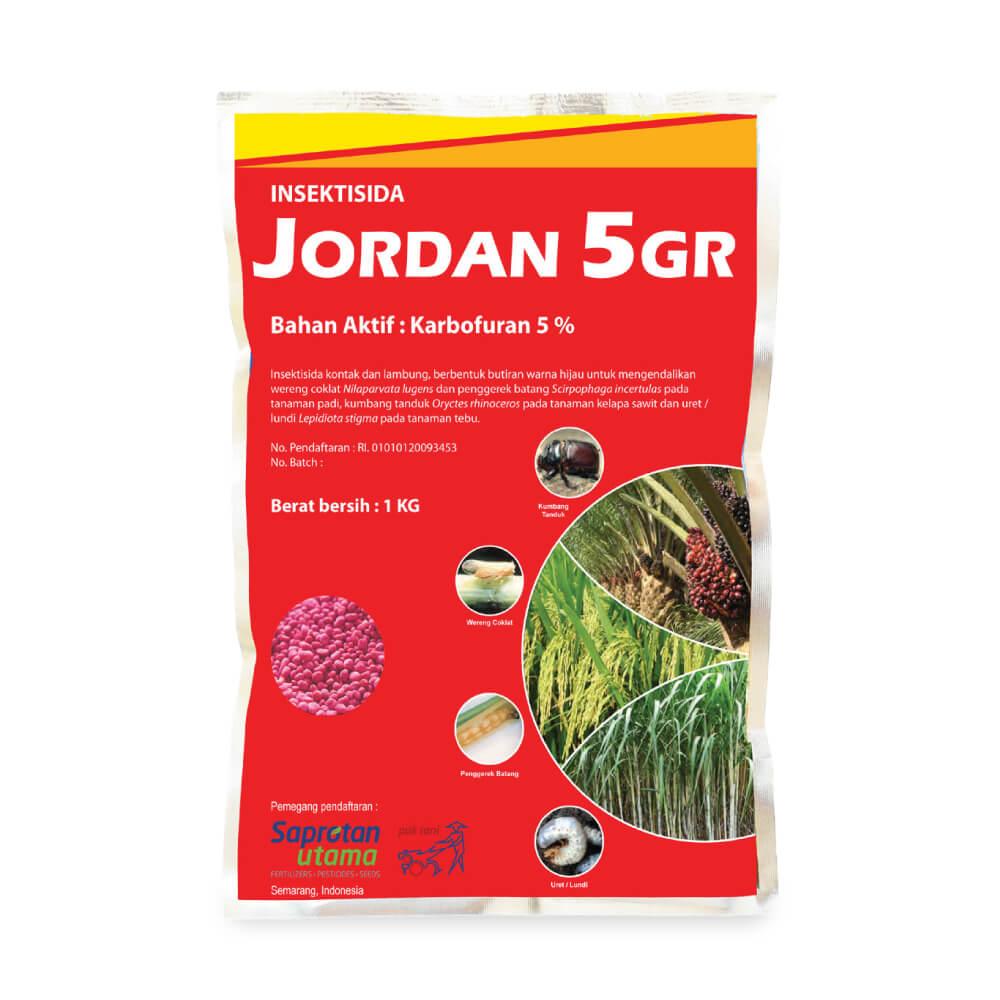 Jordan 5 GR