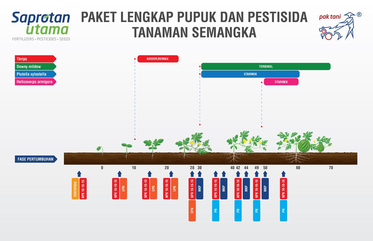 PAKET-LENGKAP-PUPUK-DAN-PESTISIDA-SEMANGKA-Final-Update_compressed-1