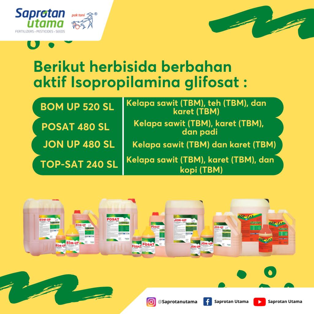 herbisida glifosat non selektif